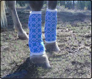 Trucking Boots