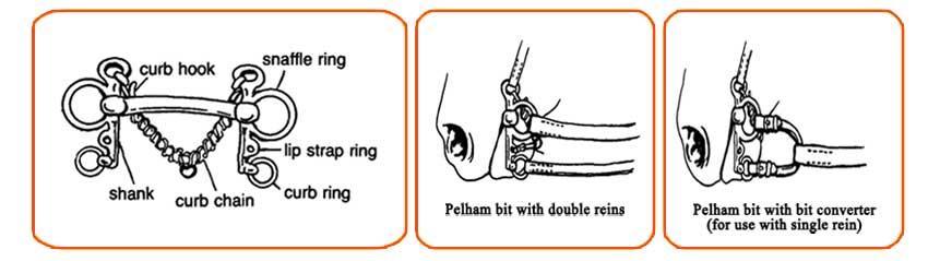 Pelham Bit Action